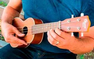 Как выбрать укулеле для начинающих