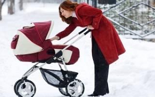 Какую выбрать коляску для новорожденного осенью