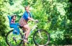 Велокресло детское как выбрать