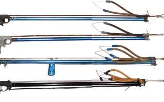 Ружье для подводной охоты как выбрать