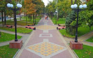 Тротуарная плитка какой толщины выбрать
