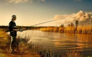 Как выбрать место для рыбалки на реке