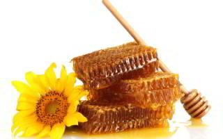 Как выбрать мед натуральный