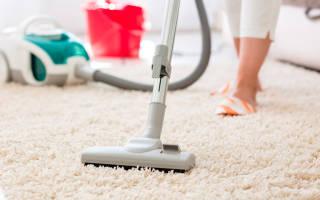 Пылесос моющий как выбрать