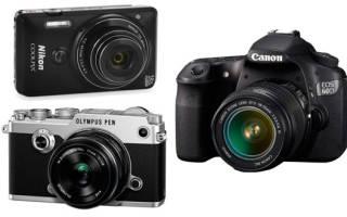 Какой лучше выбрать фотоаппарат для начинающих